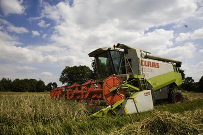 Σχέδια Βελτίωσης - Αγροσύμβουλος