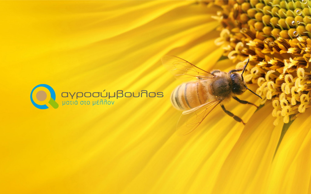 bees_agrosimvoulos