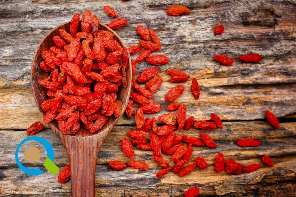 Καλλιέργεια Goji Berry | Αγροσύμβουλος