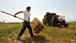 Νέοι Αγρότες 2013 – 2014   Επιδότηση έως 20.000€
