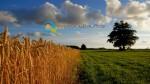 Επιδότηση έως 70000 € στους νέους αγρότες 2014-2020