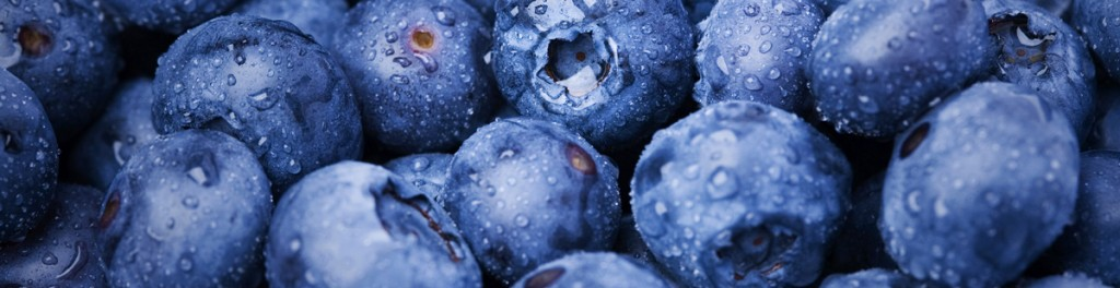blueberries-agrosimvoulos