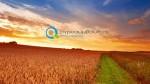 Ανακοίνωση Έναρξης   Νέοι Αγρότες 2013-2014