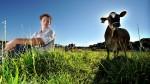 Ανακοίνωση Έναρξης | Νέοι Αγρότες 2013-2014