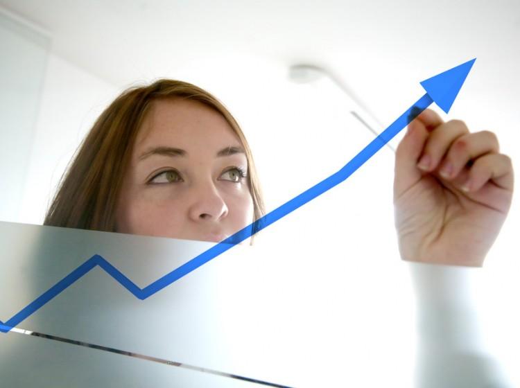 Οδηγός υλοποίησης έργων | Γυναικεία Επιχειρηματικότητα 2014 |ΑΓΡΟΣΥΜΒΟΥΛΟΣ Ο.Ε.