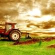 Ελάχιστος αριθμός στρεμμάτων ανά καλλιέργεια  Νέοι Αγρότες 2014   Αγροσύμβουλος Ο.Ε.
