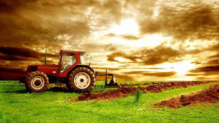 Ελάχιστος αριθμός στρεμμάτων ανά καλλιέργεια| Νέοι Αγρότες 2014 | Αγροσύμβουλος Ο.Ε.