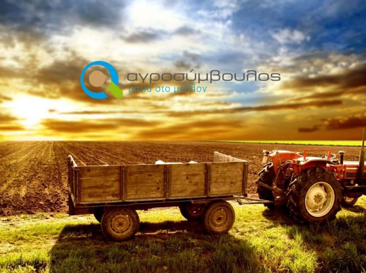 Ελάχιστος αριθμός στρεμμάτων ανά καλλιέργεια MAE  Νέοι Αγρότες 2014   Αγροσύμβουλος