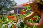 ΜΑΕ και ΑΠΑ για νέες καλλιέργειες | Νέοι Αγρότες 2014