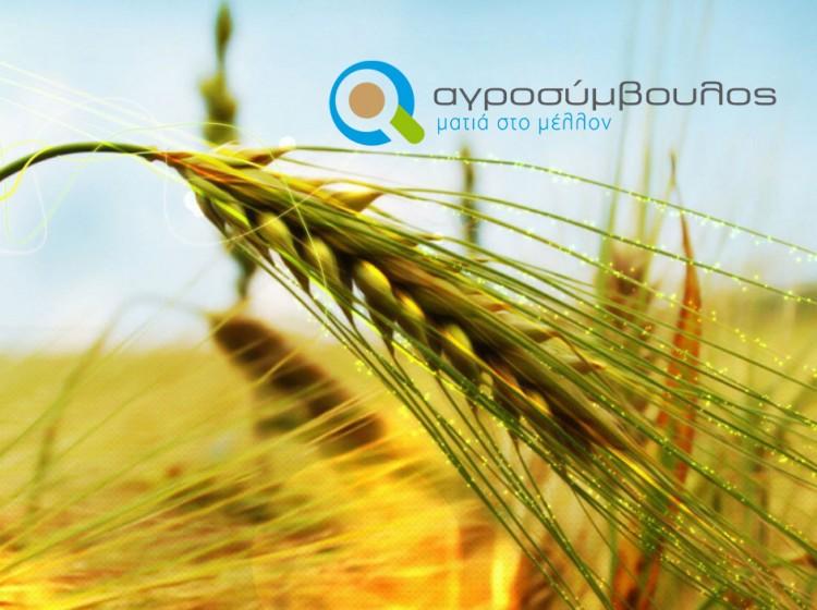 Υποβολή Φακέλων Νέων Αγροτών | Αγροσύμβουλος