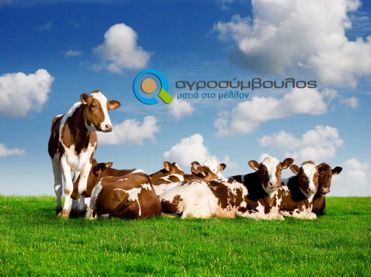 Αποστάσεις κτηνοτροφικών εκμεταλλεύσεων | Αγροσύμβουλος