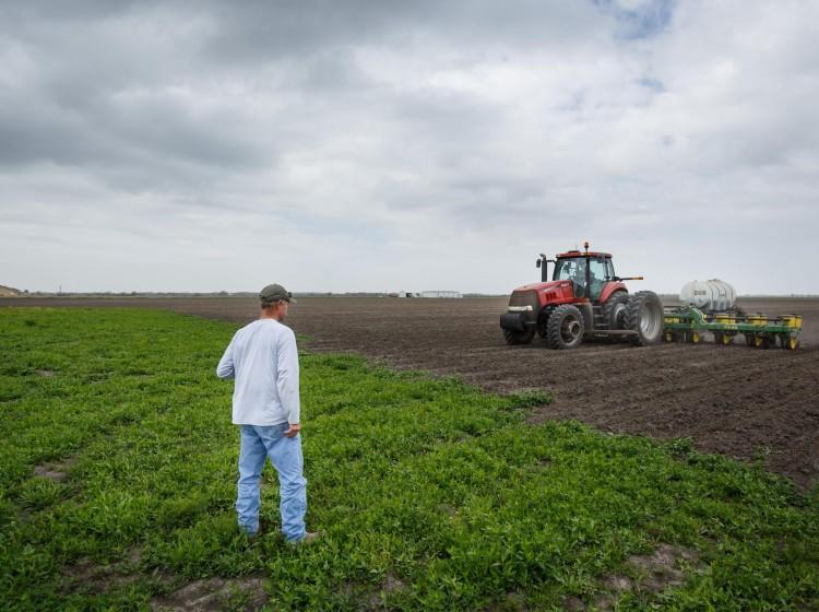 Κατανομή δικαιωμάτων σε 12.852 νέους αγρότες  Αγροσύμβουλος Ο.Ε.
