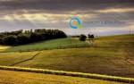 Επιλαχόντες Νέοι Αγρότες 2014