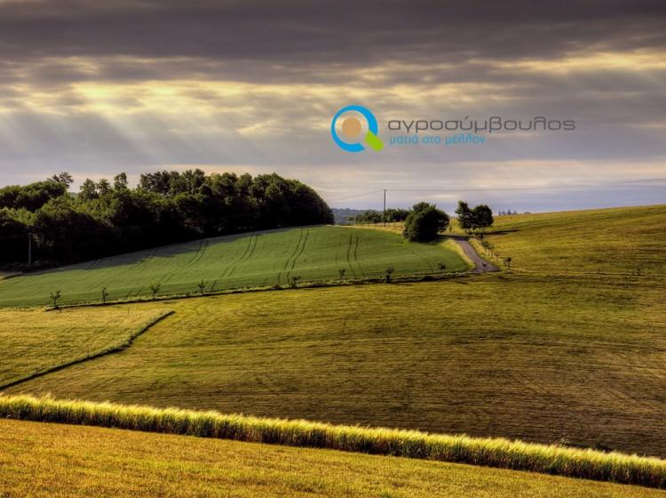 Νέα ΚΑΠ 2014 - 2020 | Αγροσύμβουλος