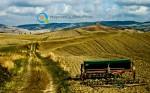 Νεα ΚΑΠ 2014 – 2020 | Περιφερειακή Κατανομή Καλλιεργειών