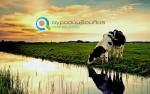 Νομιμοποίηση Κτηνοτροφικών Εγκαταστάσεων