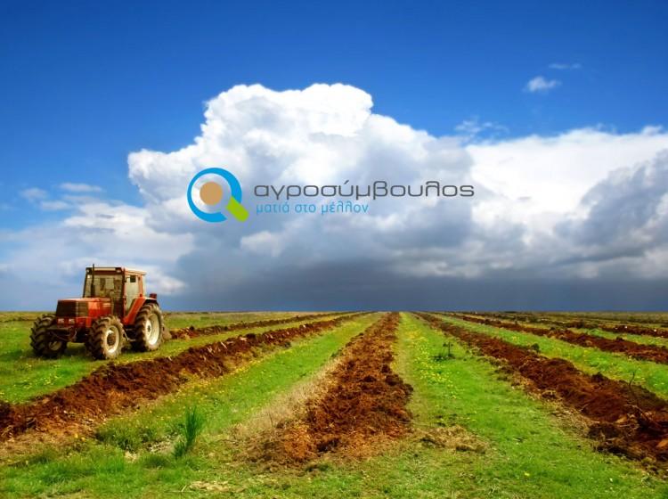 Επαγγελματίες Αγρότες   Αγροσύμβουλος