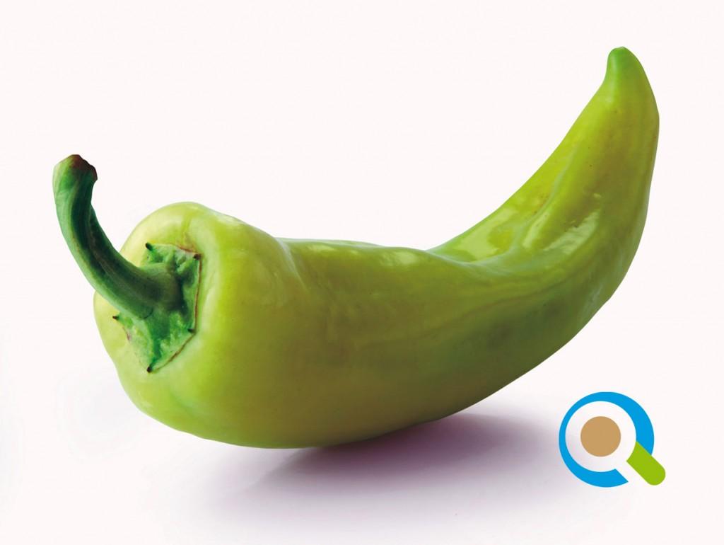 Καλλιέργεια Πιπεριάς | Καλλιεργητικές Τεχνικές