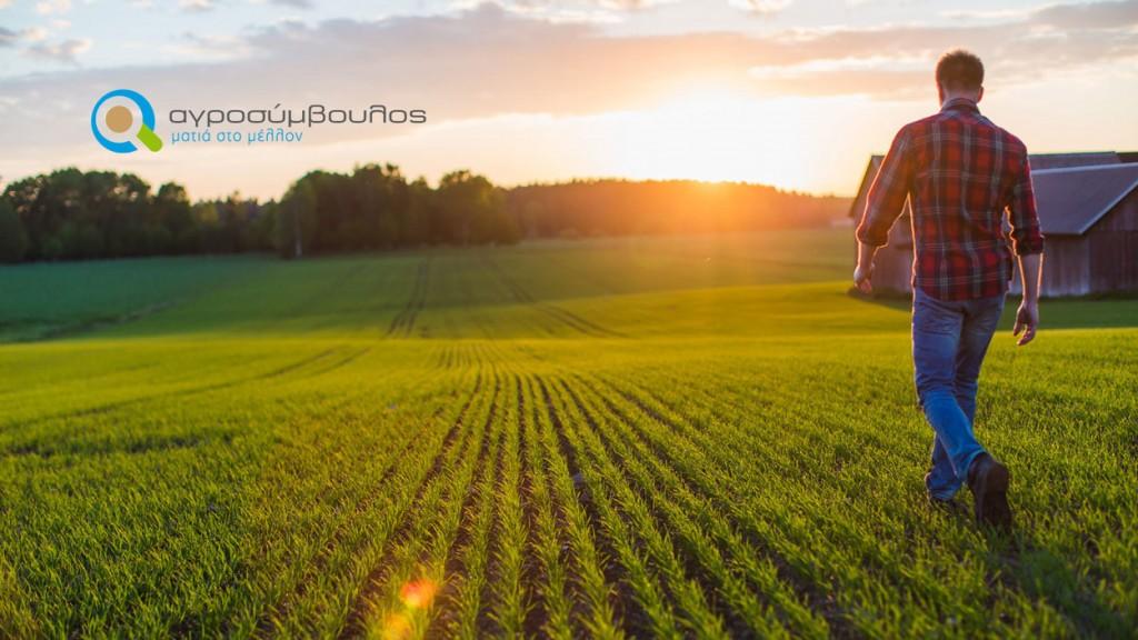 Τι ισχύει στη Νέα ΚΑΠ για τους Νέους Αγρότες;