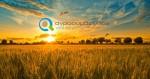 Νέοι Αγρότες | Εγγραφή στον ΟΓΑ
