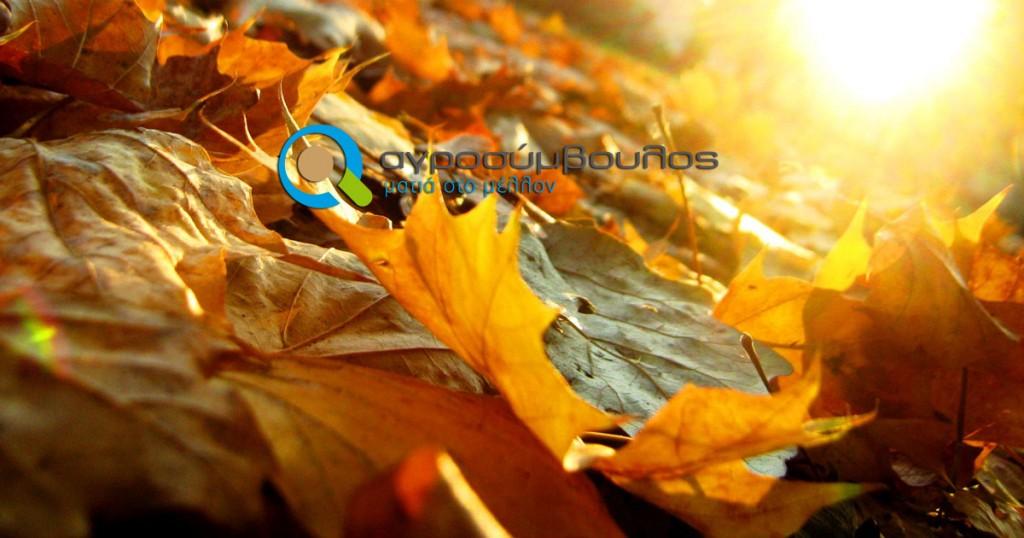 kalliergitikes-ergasies-septemvriou_agrosimvoulos