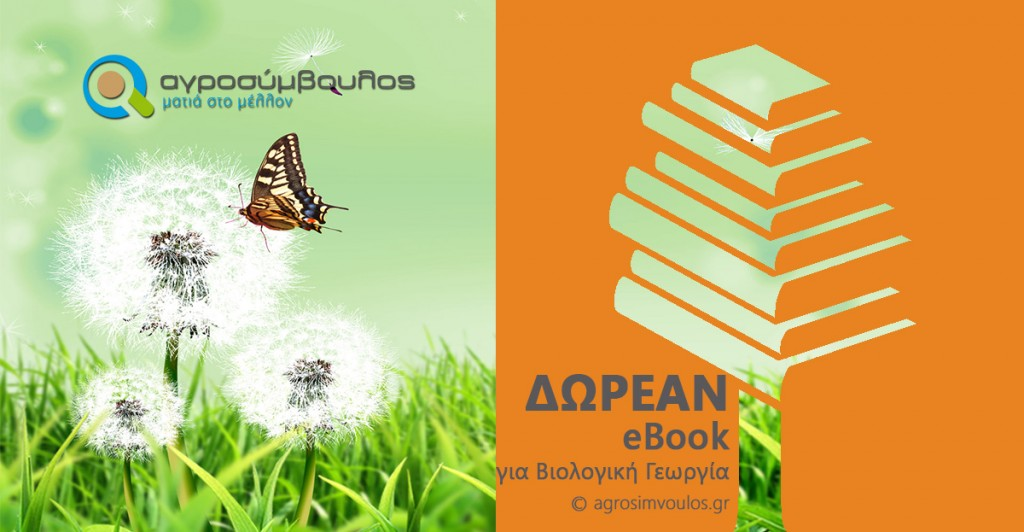 viologika-ebook2