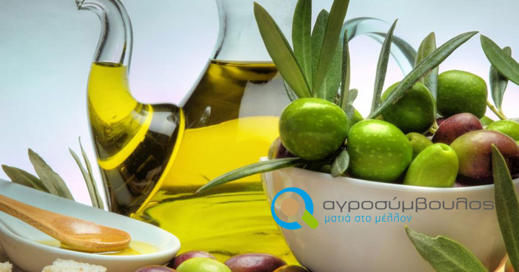 table_plate_decanter_oil_olives_bread_flat_1024x768_hd-wallpaper-412404