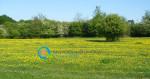 Υπομέτρο 8.2 | Στήριξη εγκατάστασης και συντήρησης γεωργοδασοκομικών συστημάτων