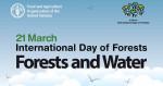 FAO : Γιορτάζοντας τα δάση και το νερό