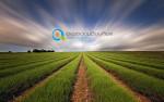 Φάσεις Υλοποίησης | Νέοι Αγρότες 2016