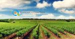 Μέτρο 11 «Βιολογικές καλλιέργειες» | Δεσμεύσεις Δικαιούχων