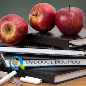 Ενίσχυση Πτυχιούχων Τριτοβάθμιας Εκπαίδευσης | Αποτελέσματα Β΄ Κύκλου