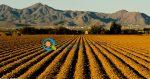 Μελέτη Κατασκευής Αγροτικής Αποθήκης 300 τ.μ | Σχέδια Βελτίωσης 2017