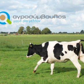 2019 Βιολογική Κτηνοτροφία | Μέτρο 11