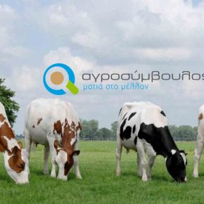 Δικαιούχοι | 2019 Βιολογική Κτηνοτροφία | Μέτρο 11