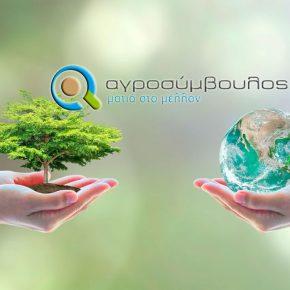 Αστικό περιβάλλον |  Διαδικασία φύτευσης ενός δέντρου