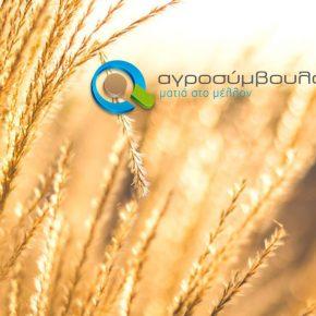 On line έκδοση Βεβαίωσης Επαγγελματία Αγρότη | ΟΠΕΚΕΠΕ