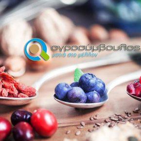 Superfoods | Ευεργετικές ιδιότητες