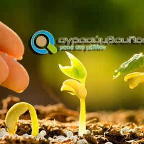 2020 | Διεθνές Έτος Υγείας των φυτών