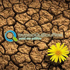 Δειγματοληψία Εδάφους | Εδαφοανάλυση