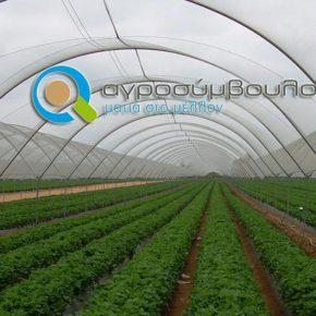 2020 | Επενδύσεις Ενεργητικής Προστασίας στις Γεωργικές Εκμεταλλεύσεις | Δικαιούχοι